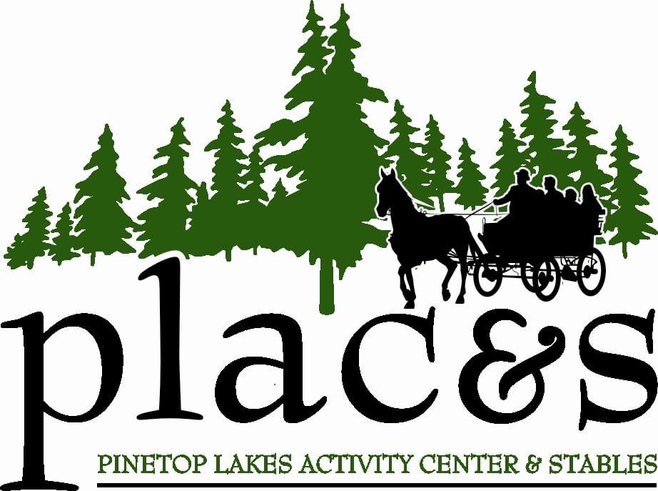 plac&s logo